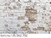 Old gray brick wall with white peeling paint. Стоковое фото, фотограф EugeneSergeev / Фотобанк Лори