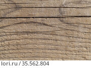 Rough wooden floor background texture. Стоковое фото, фотограф EugeneSergeev / Фотобанк Лори
