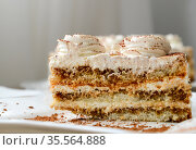 Piece of butter cream cake with a chocolate chips. Стоковое фото, фотограф Володина Ольга / Фотобанк Лори