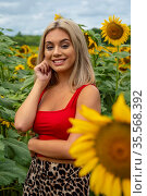 A gorgeous young blonde model poses outdoors in a field of sunflowers... Стоковое фото, фотограф Zoonar.com/Walter G Arce Sr Grindstone Media/ASP I / easy Fotostock / Фотобанк Лори