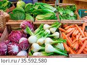 Salat und Gemüse zum Verkauf auf einem Markt in Rom, Italien. Стоковое фото, фотограф Zoonar.com/elxeneize / easy Fotostock / Фотобанк Лори