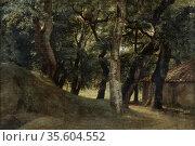 Woods of the Villa Borghese, Rome'.  Pierre de Valenciennes (1750... Редакционное фото, агентство World History Archive / Фотобанк Лори