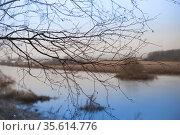 spring flood landscape in March. Стоковое фото, фотограф Дарья Филимонова / Фотобанк Лори