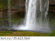ESY-058505643. Стоковое фото, фотограф Zoonar.com/Volker Rauch / easy Fotostock / Фотобанк Лори