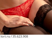 Beautiful female slim body in red panties and stockings closeup. Стоковое фото, фотограф Zoonar.com/A.Tugolukov / easy Fotostock / Фотобанк Лори