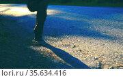 Sport man running at asphalt road. Rural city park. Green tree forest and sun rays on horizon. Стоковое видео, видеограф Александр Маркин / Фотобанк Лори