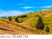Sunny day for hiking and photographing. Picturesque grassy hills with... Стоковое фото, фотограф Zoonar.com/kavram / easy Fotostock / Фотобанк Лори