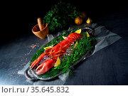 The cooked lobster on ice. Стоковое фото, фотограф Zoonar.com/Darius Dzinnik / easy Fotostock / Фотобанк Лори