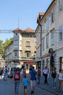 Жители и гости Любляны на улице города