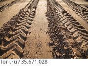 Wheel tracks in the sand go into the distance. Стоковое фото, фотограф Дмитрий Бачтуб / Фотобанк Лори