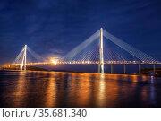 The bridge Russian over the Bosphorus East Strait in night illumination. Vladivostok, Russia (2013 год). Стоковое фото, фотограф Наталья Волкова / Фотобанк Лори