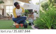 Happy african amercian woman gardening holding pot plant in garden. Стоковое видео, агентство Wavebreak Media / Фотобанк Лори