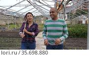 Quarrel of two male and female farmers on plantation at greenhouse. Стоковое видео, видеограф Яков Филимонов / Фотобанк Лори