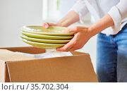 Frau beim Auspacken oder Einpacken von Geschirr beim Umzug in ein... Стоковое фото, фотограф Zoonar.com/Robert Kneschke / age Fotostock / Фотобанк Лори