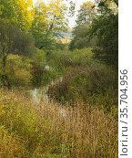 Poland. Podlasie Region. Bialowieza National Park. Hwozna river. Стоковое фото, фотограф Piotr Ciesla / age Fotostock / Фотобанк Лори