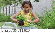 Happy hispanic girl watering flowers in pot in the garden. Стоковое видео, агентство Wavebreak Media / Фотобанк Лори