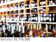 assortment of wine bottles. Стоковое фото, фотограф Яков Филимонов / Фотобанк Лори