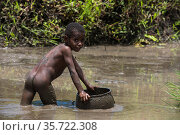 Dani tribe boy in river, Budaya village, Suroba, Trikora Mountains, West Papua, Indonesia. March 2018. Стоковое фото, фотограф Pete Oxford / Nature Picture Library / Фотобанк Лори