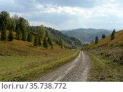 Западная Сибирь. Дорога в предгорьях Алтайских гор в таёжную деревню Генералка. Стоковое фото, фотограф Free Wind / Фотобанк Лори