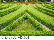 Blumenrabatte (Buchs) im Schloß Mirabell mit dem Schloßgarten. Стоковое фото, фотограф ROHA-Fotothek Fuermann / age Fotostock / Фотобанк Лори