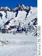 The Grosse Wannenhorn above the Aletsch Glacier in the Bernese Alps... Стоковое фото, фотограф Neil Harrison / age Fotostock / Фотобанк Лори