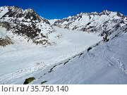 The Aletsch Glacier. Europe's longest glacier in the Bernese Alps... Стоковое фото, фотограф Neil Harrison / age Fotostock / Фотобанк Лори