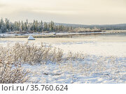 Winter landscape with snowy trees and lake with open water, Gällivare... Стоковое фото, фотограф Mats Lindberg / age Fotostock / Фотобанк Лори