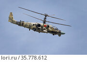 ZHUKOVSKY, RUSSIA - SEPTEMBER 01, 2019: Demonstration of the Kamov Ka-52 Alligator attack helicopter of the Russian Air Force at MAKS-2019, Russia. Редакционное фото, фотограф Фотограф / Фотобанк Лори