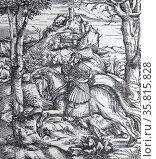 The Weiss König (White King) 1515. Редакционное фото, агентство World History Archive / Фотобанк Лори