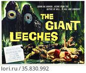 Attack of The Giant Leeches, 1959, starring Ken Clark. Редакционное фото, агентство World History Archive / Фотобанк Лори