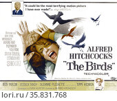 The Birds' starring Rod Taylor, Jessica Tandy, Suzanne Pleshette and 'Tippi' Hedren a 1963 suspense/horror film. Редакционное фото, агентство World History Archive / Фотобанк Лори