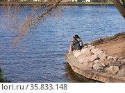 Девушки, сидящие на берегу реки Нева разговаривают. Лопухинский сад. Санкт-Петербург, Россия. Редакционное фото, фотограф Grigory / Фотобанк Лори