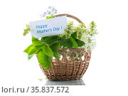 bouquet of white lilacs with a thank you card. Стоковое фото, фотограф Peredniankina / Фотобанк Лори
