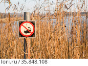 Fishing forbidden sign by a lake in the autumn with tall reeds in... Стоковое фото, фотограф Zoonar.com/Polarpx / age Fotostock / Фотобанк Лори