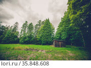 Small wooden shed on a field in a forest. Стоковое фото, фотограф Zoonar.com/Polarpx / age Fotostock / Фотобанк Лори