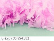Viele lila Federn als abstrakte Hintergrund Textur. Стоковое фото, фотограф Zoonar.com/Robert Kneschke / age Fotostock / Фотобанк Лори