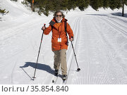 A woman cross country skis at Silver Star ski resort near Vernon, ... Стоковое фото, фотограф Douglas Williams / age Fotostock / Фотобанк Лори