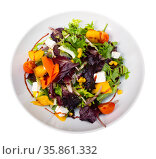 Salad with mix of greens, tomatoes, mango and soft cheese. Стоковое фото, фотограф Яков Филимонов / Фотобанк Лори