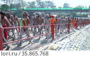 Indian saints or sadhus at Indian largest gathering religious Festival Kumbh Mela, Haridwar India, Appleprores 422, Cinetone. Редакционное видео, видеограф Devendra Rawat / Фотобанк Лори