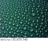 Water bubbles on surface. Стоковое фото, агентство Ingram Publishing / Фотобанк Лори