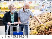 mature couple mature caucasian couple chooses potato in vegetable section of supermarket. Стоковое фото, фотограф Татьяна Яцевич / Фотобанк Лори