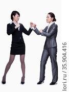 Businesswomen about to fight. Стоковое фото, агентство Ingram Publishing / Фотобанк Лори
