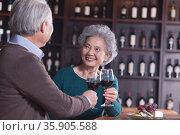 Senior Couple Toasting and Enjoying Themselves Drinking Wine, Focus on Female. Стоковое фото, агентство Ingram Publishing / Фотобанк Лори