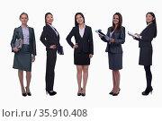 Portrait of five young smiling businesswomen, looking at camera, studio shot. Стоковое фото, агентство Ingram Publishing / Фотобанк Лори