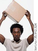 Portrait of a delivery man. Стоковое фото, фотограф Shannon Fagan / Ingram Publishing / Фотобанк Лори