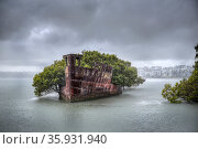 The rusted hull of an old steamship, the SS Ayrfield.  Wentworth Point, Homebush, NSW, Australia. October 2014. Стоковое фото, фотограф Doug Gimesy / Nature Picture Library / Фотобанк Лори