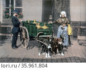 Flemish milk peddler standing next to her cart. Редакционное фото, агентство World History Archive / Фотобанк Лори