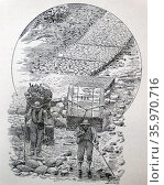 Engraving depicting an old cobblestone road in Colombia. Редакционное фото, агентство World History Archive / Фотобанк Лори