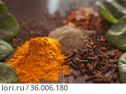 Sorted spices on dark wood background, seasonings for food. Top view of curry, paprika, pepper, cloves, bay leaf, turmeric, spices concept. Стоковое фото, фотограф Ольга Балынская / Фотобанк Лори
