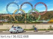 Олимпийские кольца на территории аэропорта Сочи. Адлер, Россия. Редакционное фото, фотограф Владимир Сергеев / Фотобанк Лори